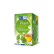 Biolys Tisane ginkgo the vert 24 sachets