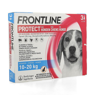 Frontline Protect spot on chien M 10-20kg pipette 3pc