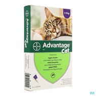 Advantage Cat 80 chat >4kg 4x0,8ml