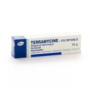Terramycine ung derm 15g