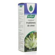 A. Vogel Cinuforce Forte Spray Nasal  20ml