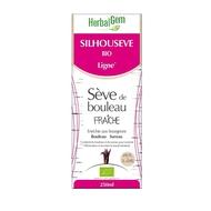 Herbalgem Silhouseve Bio Ligne Seve bouleau 250ml